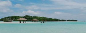 pulau pari murah