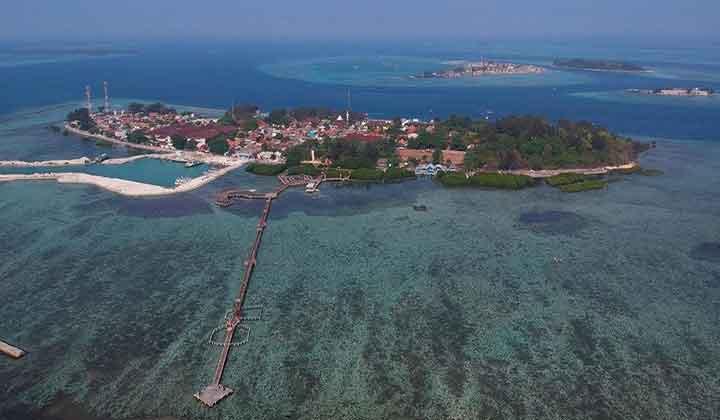 penangkaran hiu di Pulau Pramuka