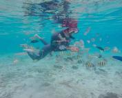 Kegiatan water sport