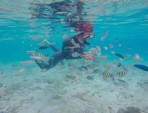 Kegiatan Water Sport yang Dapat dilakuan di Kepulauan Seribu