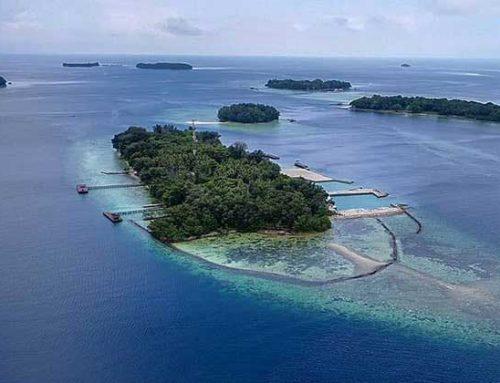 Ini Dia Keindahan Pulau Sepa yang Memikat Hati